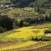 【祝!世界農業遺産認定】後世に残したい高千穂郷の4つの魅力