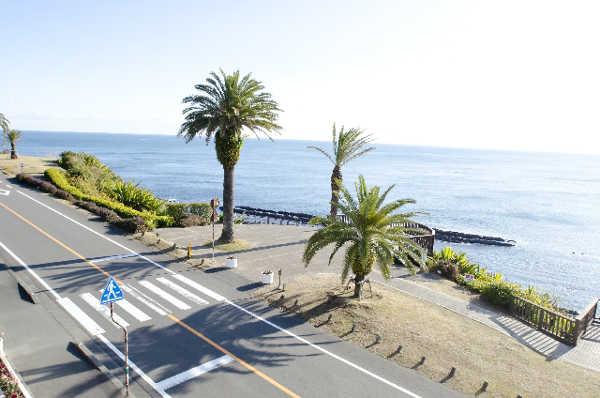 宮崎県日南海岸の風景