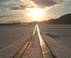 太陽に向かって伸びている道