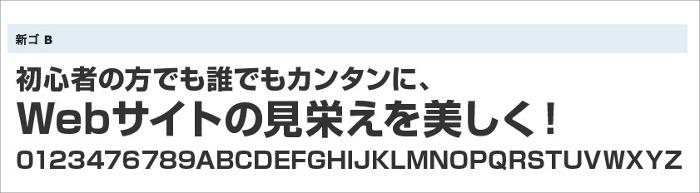webフォント新ゴ B