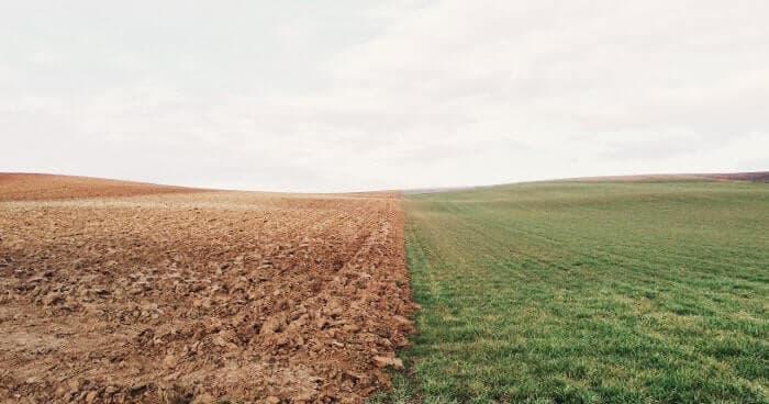 荒れた畑ときれいに耕された畑