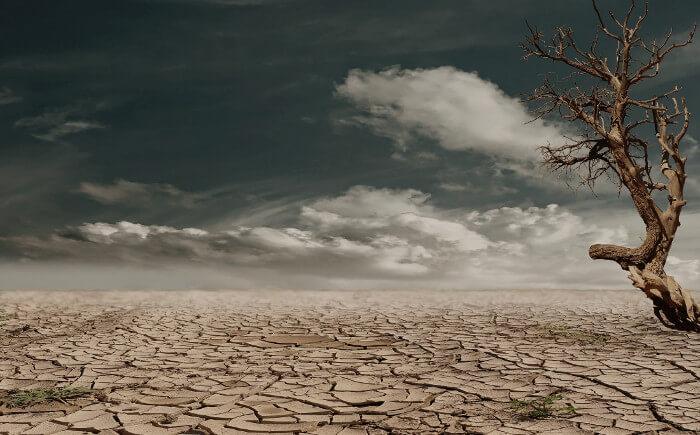 荒れた土地の写真
