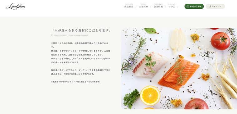 レティシアンのホームページ